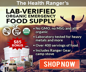 Organic-Storable-Food-Supply-MR