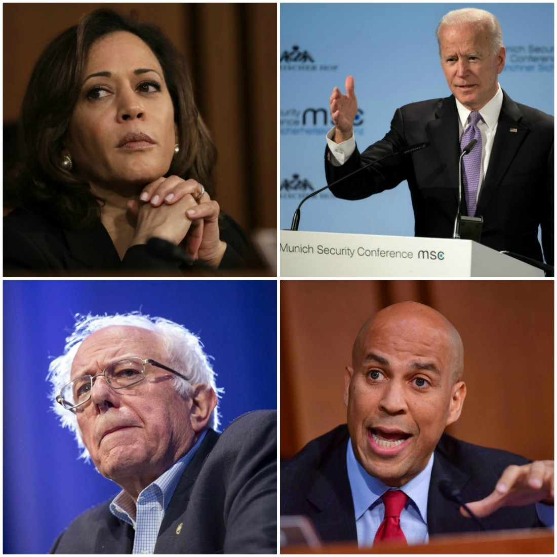 Early New Hampshire polling has 'old white guys' leading Democratic pack as party elders worry about extreme Leftward lurch